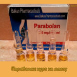 Параболан: курс на массу